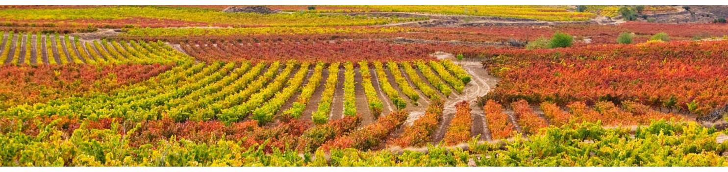 Rioja | La Viña Distribuciones